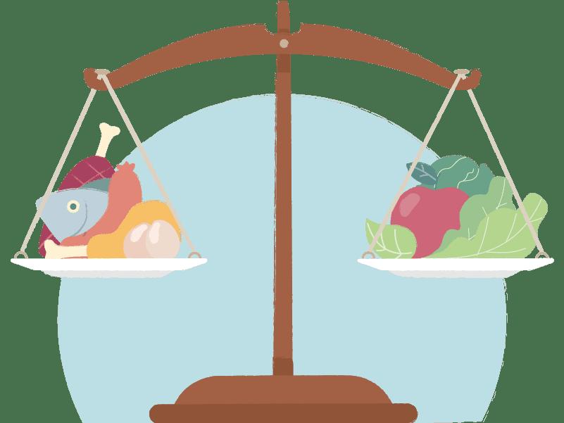 Voedingsbalans